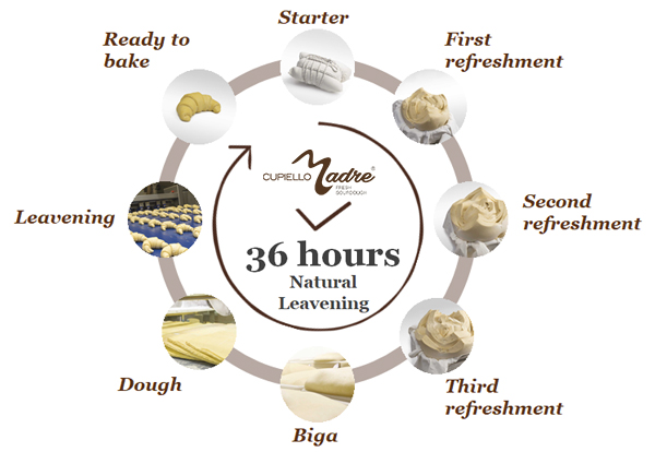 36 hours Natural Leavening